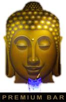 logo-premiumbar