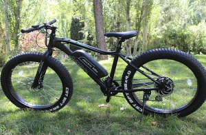 Bicicleta eléctrica Fat con motor de 250W