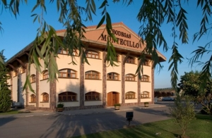 Visita a Bodegas Montecillo + cata + picoteo+ botella crianza