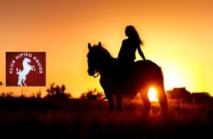 Disfruta de un agradable paseo a caballo de 1 hora