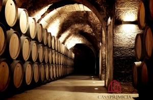 En Laguardia, visita, degustación y botella de vino ecológico